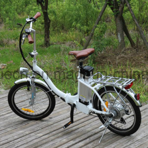 250W Brushless Motor Ebike with EEC pictures & photos