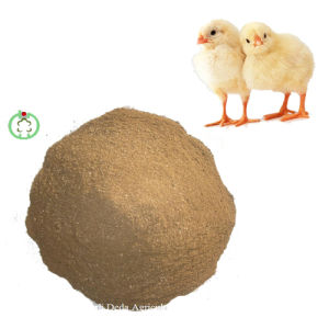 Meat an Bone Meal (meat bone meal) for Sale pictures & photos