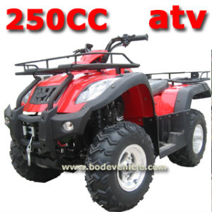250cc EEC ATV pictures & photos