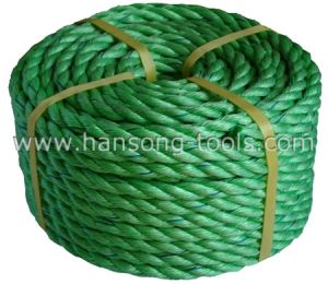 PP Twisted Rope pictures & photos