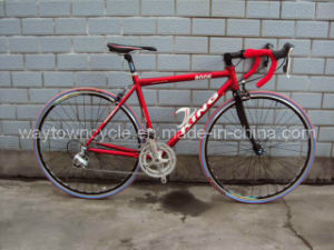Road Bike (WT-RB-03) pictures & photos