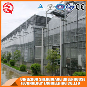 China Venlo Vegetable/Garden Tempered Glass Green House pictures & photos