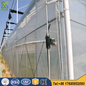 Large 10 Meters Multi-Span Plastic Film Greenhouse for Vegetables pictures & photos