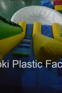 Inflatable Water Slides with Swimming Pools for Kids Used (RC-017) pictures & photos