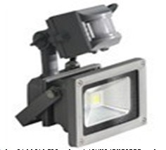 PIR COB LED Floodlight, PIR Flood Light, PIR Indoor & Outdoor Lighting pictures & photos