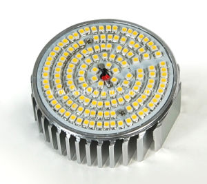5-12W LED Down Light (B2009)