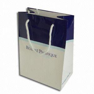 Shopping Paper Bags (HPSB-0111)