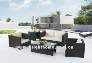 Rattan Outdoor Sofa Set pictures & photos