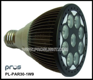 9W LED PAR30 Bulb Light