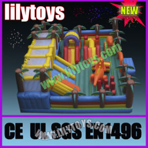 Inflatable Fun City, Inflatable Amurement Park, Inflatable Castle pictures & photos