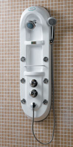 Shower Panel (P003)