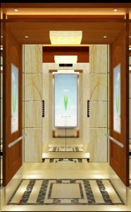 Reliable Elevator/Lift-Passenger Lift/Passenger Elevator in China