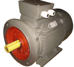 Ie1 Ie2 (CE) Y2 Three Phase Electric Motor (Y2-200L-4) pictures & photos