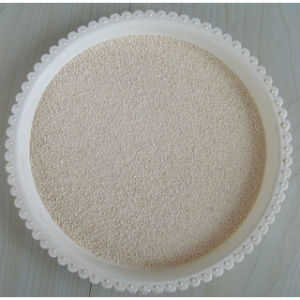 L-Lysine HCl 98.5% for Feed Additives China pictures & photos
