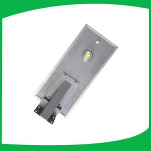 18W LED Garden Light with Solar Panels pictures & photos