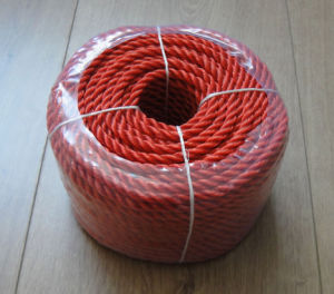 Colour High Quality PE Rope pictures & photos