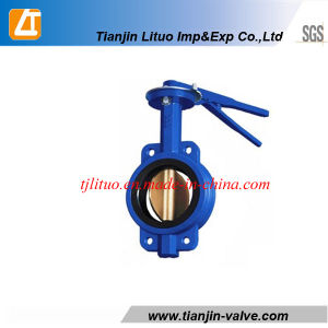 Tianjin Manufacturer Cast Iron Wafer Butterfly Valve pictures & photos