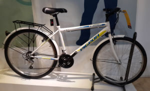 Hot Sale Economic Mountain Bicycle (FP-MTB-ST012) pictures & photos