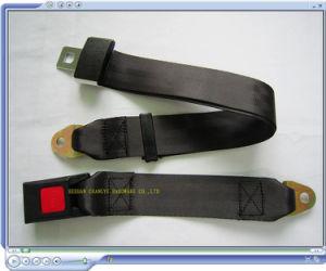 Auto Seat Belts