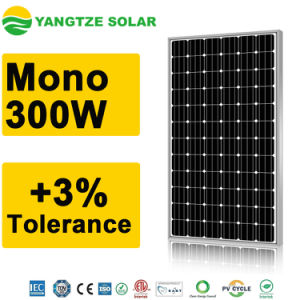 China Best Supplier Monocrystalline Solar Panel 300W pictures & photos
