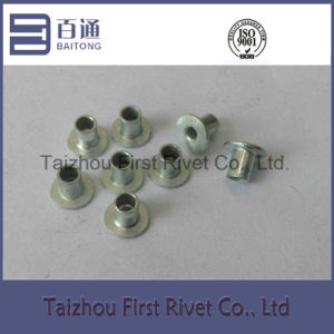 4X5.5mm White Zinc Color Flat Head Full Tubular Steel Rivet pictures & photos