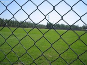 High Quality Chain Link Fence (factory export) pictures & photos