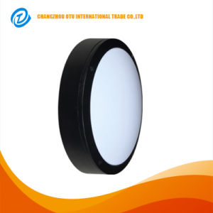 IP65 CREE Chip 20W LED Outdoor Wall Lamp pictures & photos