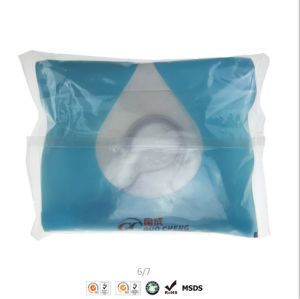 Actived Carbon Wardrobe Household Dry Bag Moisture Absorbent pictures & photos