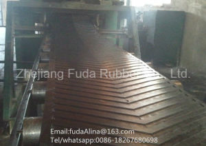 Special V Shape Chevron Conveyor Belt, Ribbed Conveyor Belt, Pattern Conveyor Belt pictures & photos
