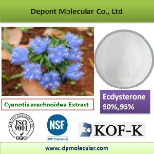 Ecdysterone 90%, 95%, CAS No. 5289-74-7 pictures & photos
