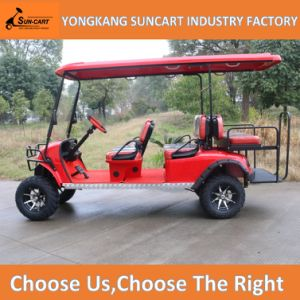 China 6 Seat Electric Sightseeing Golf Carts with 2 Back Seat (RY-EZ-601A) pictures & photos