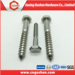 Stainless Seel A2-70 Hex Head Wood Screw M20 pictures & photos