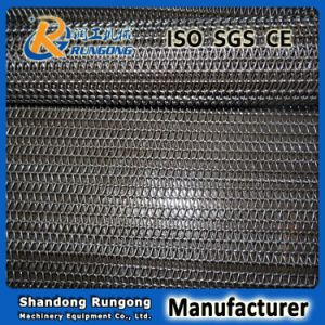 Single Spiral Conveyor Belt for Biscuits Cookies Hamburgers Food Processing pictures & photos