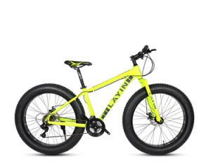High Quality Aluminum Alloy Beach Bike with Fat Tires pictures & photos