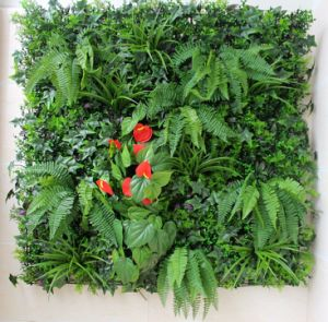 Hot Sale Artificial Green Wall Cheap Price Artificial Plant Wall pictures & photos