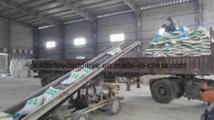 Manufacture of DCP Animal Feed pictures & photos