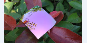Fashion Polarized Tac Lens Mirror Sunglasses Lens (R Light Purple) pictures & photos
