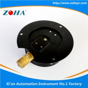 High Temperature Resistance General Manometer with Flange pictures & photos