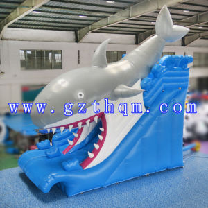 Adult Giant Inflatable Water Slide with Pool/New Design Giant Inflatable Water Slides pictures & photos