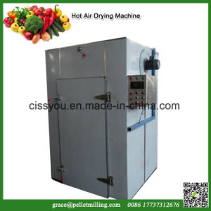 China Stainless Steel Vegetable Fruit Fish Beef Seafood Drying Dryer pictures & photos