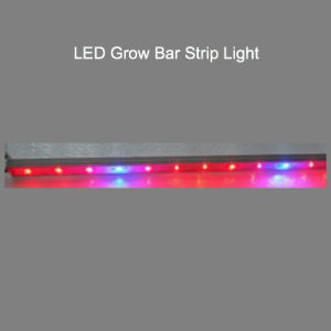 1.2m 36W LED Grow Light/LED Bar Light pictures & photos
