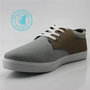 Men Shoes Leisure Mesh Footwear Sneaker (SNC-011345) pictures & photos