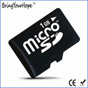 Real Full 1GB C6 High Speed Micro SD Memory Card (1GB TF) pictures & photos