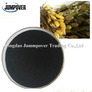 Competetive Price Seaweed Extract for Agriculture