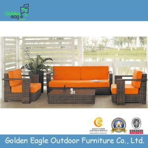 Outdoor Furniture Rattan/Wicker Sofa Set (S0018) pictures & photos