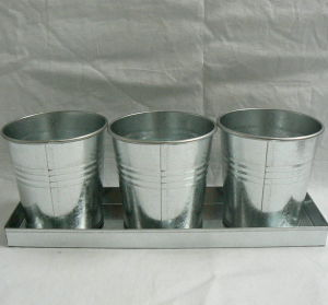 Export Gardening Metal Round Bucket with Tray Experienced Manufactory pictures & photos