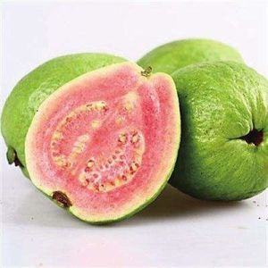 Guava Fruit Juice Powder for Beverage and Food Flavor pictures & photos