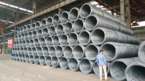 Hot Rolled Wire Rod Used for Wire Mesh and Nail Making pictures & photos