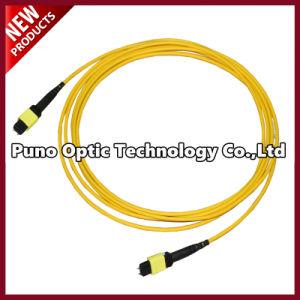 12 Fibers Singlemode MTP Trunk Fiber Optic Cable Yellow Jacket pictures & photos