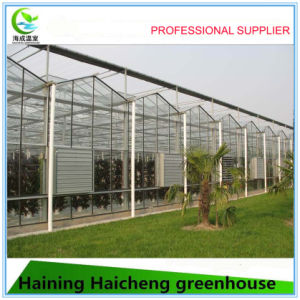 Modern Solar Intelligent Agriculture Greenhouse pictures & photos